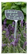 European Markets - Lavender Beach Towel