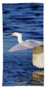 Evening Flight Beach Towel