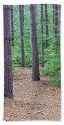 Evergreen Forest Beach Towel