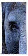 Eye Of The Elephant Beach Towel