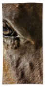 Eye Of The Horse Beach Towel