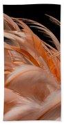 Fabulous Flamingo Feathers Beach Towel