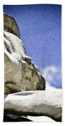Face Of Courage Beach Towel
