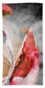 Faded Rose Beach Towel