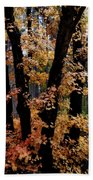 Fall Beckons  Beach Towel