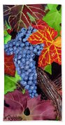 Fall Cabernet Sauvignon Grapes Beach Towel by Mike Robles