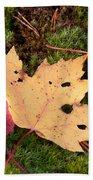 Fall Colors Beach Towel