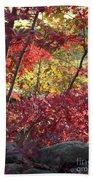 Fall Comes To New England Beach Towel