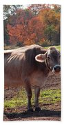 Fall Cow Beach Towel