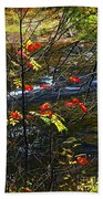Fall Forest And River Beach Towel by Elena Elisseeva