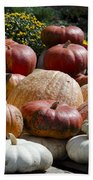 Fall Harvest Colorful Gourds 7965 Beach Towel