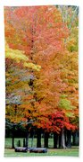 Fall In Michigan Beach Towel by Optical Playground By MP Ray