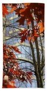 Fall In The City 1 Beach Towel