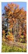 Fall In The Foothills Beach Towel