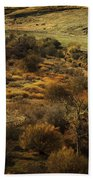 Fall In The Valley Beach Towel