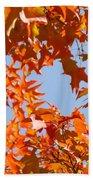 Fall Leaves Art Prints Autumn Red Orange Leaves Blue Sky Beach Towel