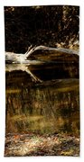 Fall Log Reflection Beach Towel