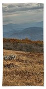 Fall Scene On Whitetop Mountain Va Beach Towel