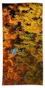 Fall Textures In Water Beach Towel by LeeAnn McLaneGoetz McLaneGoetzStudioLLCcom