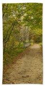 Fall Trail Scene 23 Beach Towel