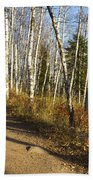 Fall Trail Scene 35 A Beach Towel