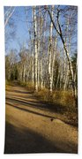 Fall Trail Scene 35 B Beach Towel