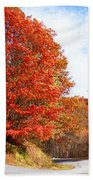 Fall Tree By The Road Beach Towel