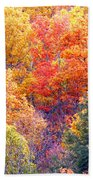 Fall Trees 3 Beach Towel