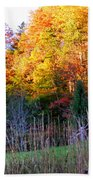Fall Trees And Fence Beach Towel