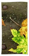 Fall Trio Beach Towel
