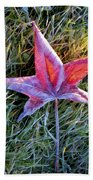 Fallen Autumn Leaf In The Grass During Morning Frost Beach Towel