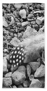 Fallen Feathers Black And White Beach Towel
