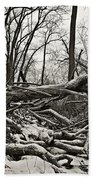 Fallen Soldiers Of The Forest Beach Towel