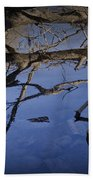 Fallen Tree Trunk With Reflections On The Muskegon Rive Beach Towel