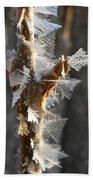 Fancy Fractal Frost Crystals Beach Towel
