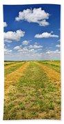 Farm Field At Harvest In Saskatchewan Beach Towel