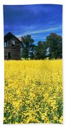 Farm House And Canola Field, Holland Beach Towel