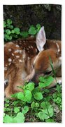 Fawn 2292 Beach Towel