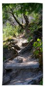 Feather Falls Stairway Beach Towel