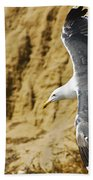 Feathered Friend Cruising Beach Towel