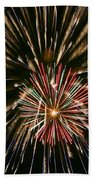 Feathers Of Fire Beach Towel