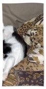 Felis Catus Beach Towel