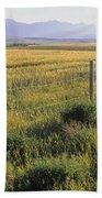 Fence And Barley Crop, Near Waterton Beach Towel