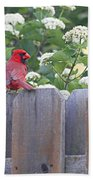 Fence Top Beach Towel