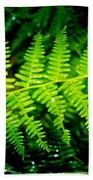 Fern II Beach Towel
