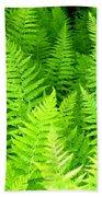 Ferns Galore Filtered Beach Towel