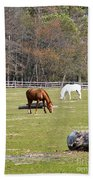 Field Of Horses Beach Towel