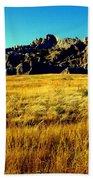 Fields Of Gold Beach Towel