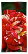 Fiesta Rose Beach Towel