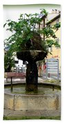 Fig Tree Fountain In Cassis Beach Towel